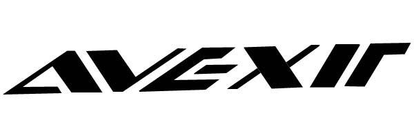 Avexir_logo_large