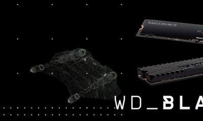 Le WD SN750 Black