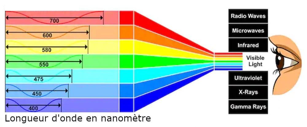 les différentes couleurs et leurs longueurs d'ondes associées
