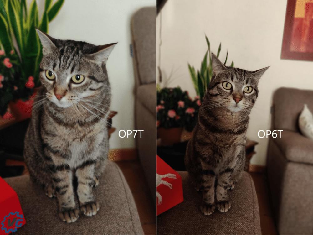 Lily mode portrait comparaison