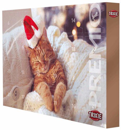 Calendrier de l'Avent 2019 pour chats