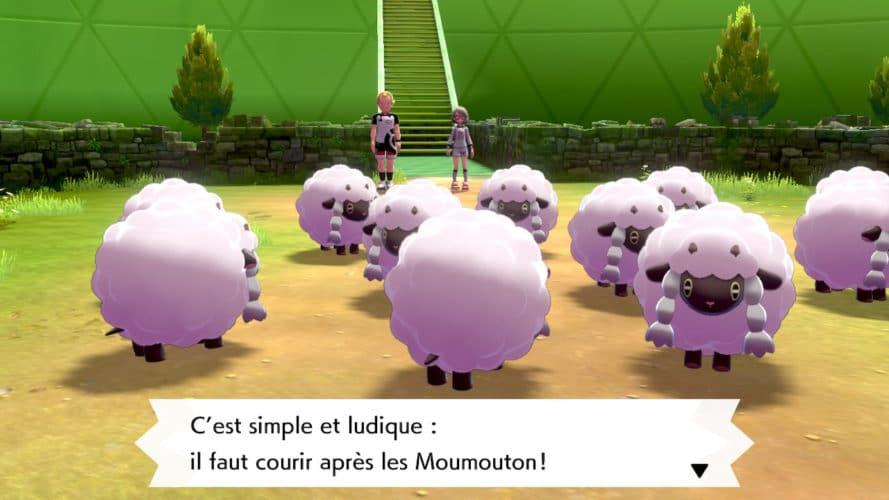 Moumouton Pokemon épée
