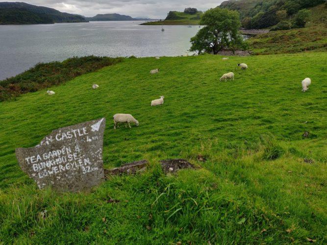 Road Trip in Scotland île de kerrera