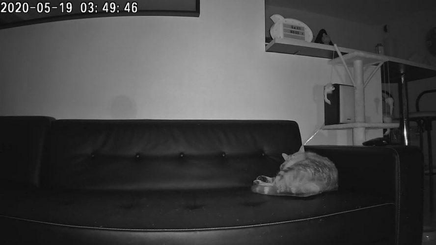 Camera de surveillance - Vision nocturne