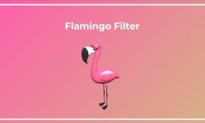 Flamingo filter créé des filtres Snapchat pour la Woncup Valorant